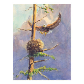 EAGLES NEST durch SHARON SHARPE Postkarte