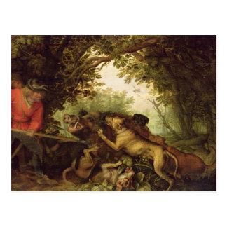 Eber-Jagd, 1611 Postkarte