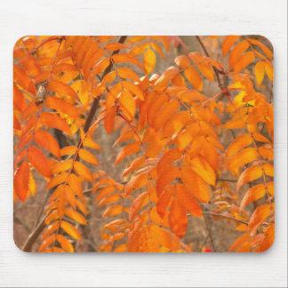 Ebereschen-Blätter im Herbst Mousepad