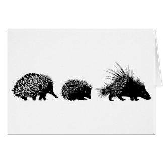 Echidna, Igel, Stachelschweingrußkarte Karte