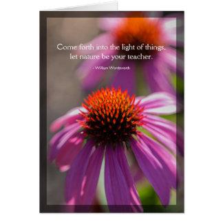 Echinacea-Natur-Zitat-leere Karte