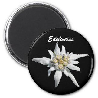 Edelweiss Blumen-Blüte Runder Magnet 5,7 Cm