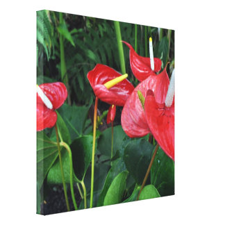 Eden-Projekt-botanisches Rot Leinwanddruck