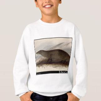 Edward Lear mit einem Band versehener Mungo Sweatshirt