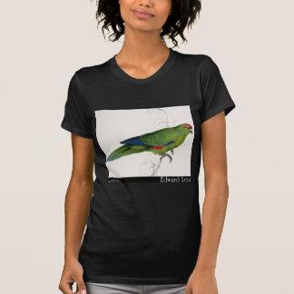 Edward Lear pazifischer Parakeet T-Shirt