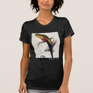 Edward Lear schwarzschwanziger Parakeet T-Shirt