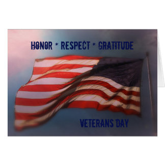 Ehrenrespekt-Dankbarkeit - danke Veteranen-Karte Karte