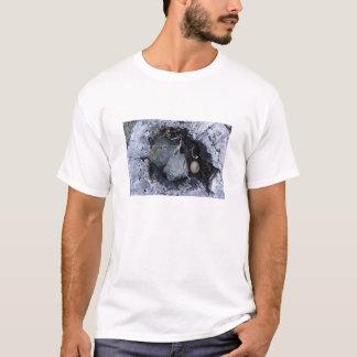 Ei in einem Stumpf T-Shirt