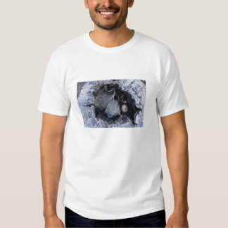 Ei in einem Stumpf T Shirts