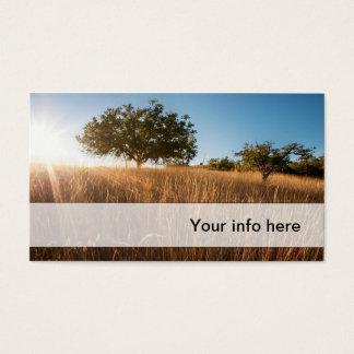 Eiche in der sonnigen goldenen Wiese Visitenkarte