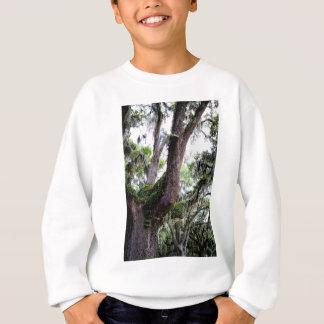 Eiche u. mossGeorgia Liveeichen und spanisches Sweatshirt