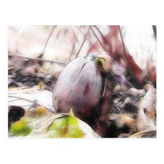 Eichel-Sprössling im Vorfrühling-Garten Postkarte