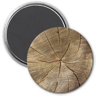 Eichen-großer runder Querschnittsmagnet Runder Magnet 7,6 Cm