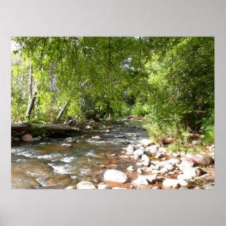 Eichen-Nebenfluss II Sedona Arizona in der Poster