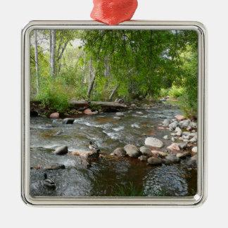 Eichen-Nebenfluss-und Quadratisches Silberfarbenes Ornament