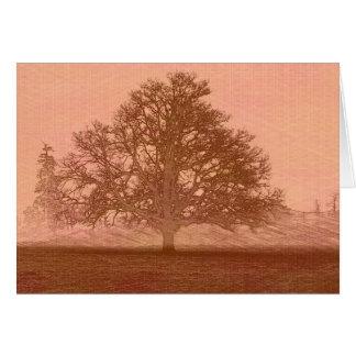 Eichenbaum-Silhouette des Sonnenuntergangs Karte