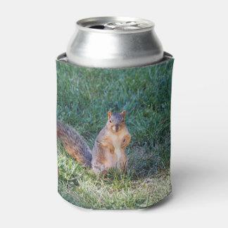 Eichhörnchen 95 dosenkühler