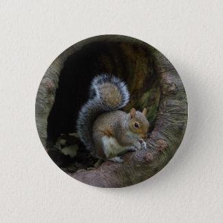 Eichhörnchen-Abzeichen Runder Button 5,1 Cm