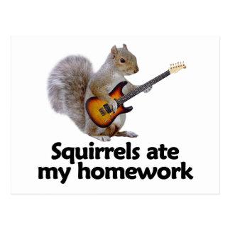 Eichhörnchen aßen meine Hausaufgaben Postkarte