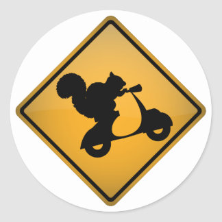 Eichhörnchen auf Roller Sticker