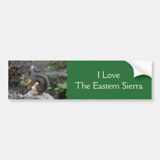 Eichhörnchen-Autoaufkleber Autoaufkleber