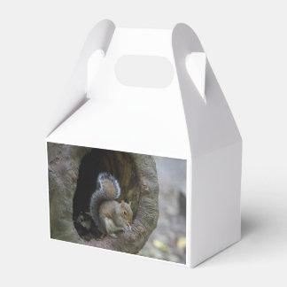 Eichhörnchen-Bevorzugungs-Kasten Geschenkschachtel