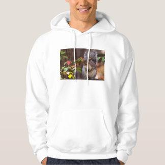 Eichhörnchen bittet geduldig hoodie