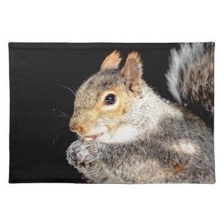 Eichhörnchen, das eine Nuss isst Stofftischset