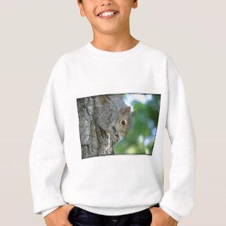Eichhörnchen, das in einem Baum hängt Sweatshirt