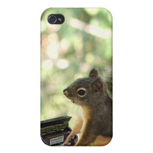Eichhörnchen, das Klavier spielt iPhone 4 Hüllen