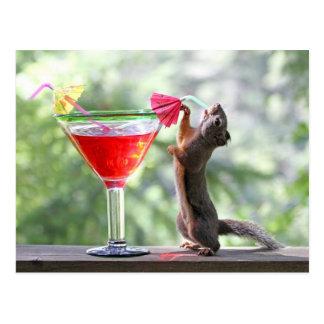 Eichhörnchen, das tropisches Getränk trinkt Postkarte