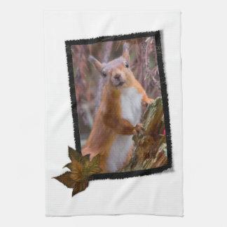 Eichhörnchen-Geschirrtuch Handtuch