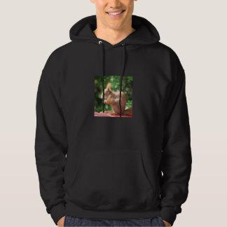 Eichhörnchen Hoodie