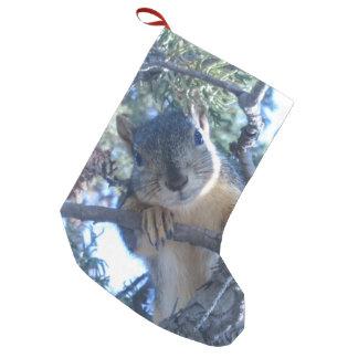 Eichhörnchen im Baum - Kleiner Weihnachtsstrumpf
