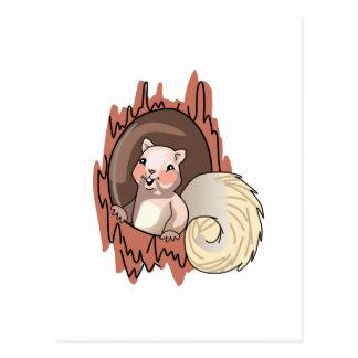 Eichhörnchen im Baum Postkarte