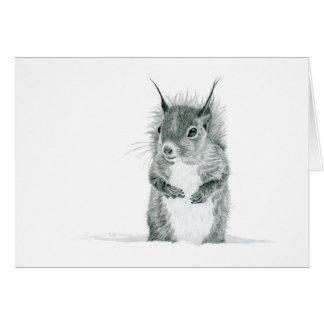 Eichhörnchen im Schnee, der Gruß-Karte zeichnet Karte