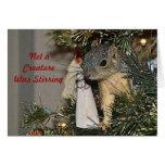 Eichhörnchen im Weihnachtsbaum Grußkarten