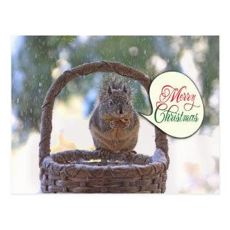 Eichhörnchen in den Schnee-Sprichwort-frohen Weihn Postkarten