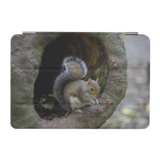 Eichhörnchen iPad Abdeckung iPad Mini Hülle