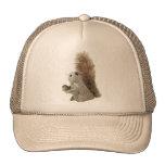 Eichhörnchen-Marionetten-Hut Baseballmützen
