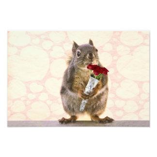 Eichhörnchen mit Blumenstrauß der Roter Rosen Photo