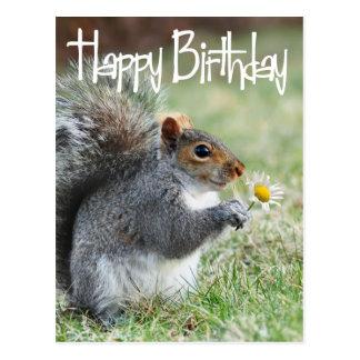 Eichhörnchen mit Gänseblümchen-alles- Gute zum Postkarte