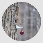 Eichhörnchen mit Weihnachtsverzierungsaufklebern Runder Aufkleber