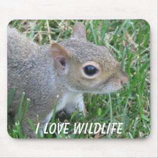 Eichhörnchen Mousepad I Liebe-wild lebende Tiere