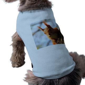 Eichhörnchen-Nagetier-Säugetier T-Shirt