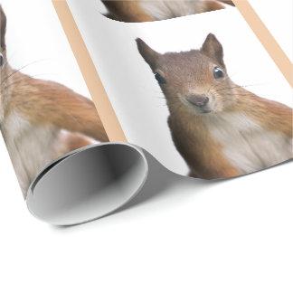 Eichhörnchen-Porträt-Packpapier Geschenkpapier