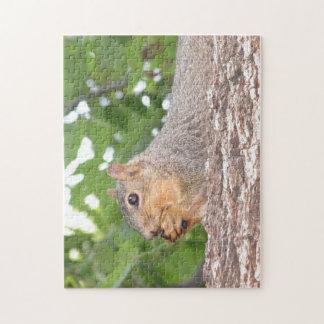 Eichhörnchen-Puzzle Puzzle