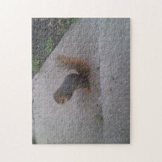 Eichhörnchen-Puzzlespiel Puzzle