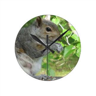 Eichhörnchen-Räuber Runde Wanduhr