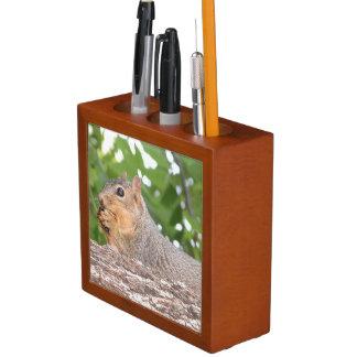 Eichhörnchen-Schreibtisch-Organisator Stifthalter